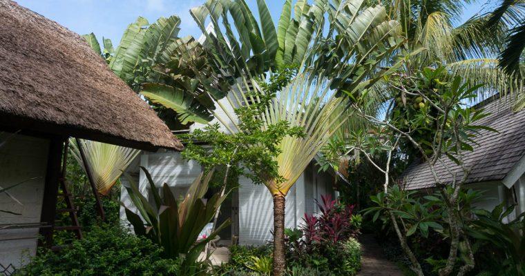 Bali – Lieblings Surfstrände