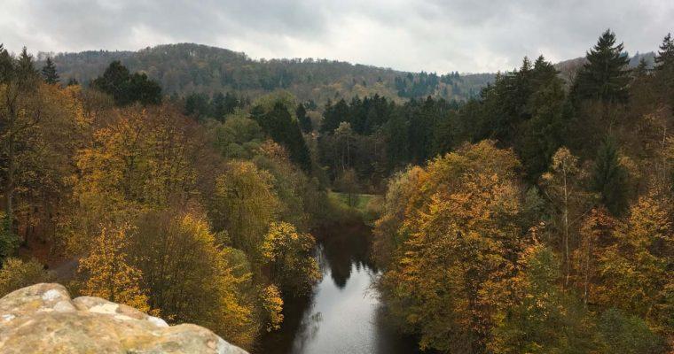 Herbstspaziergang im Teutoburger Wald